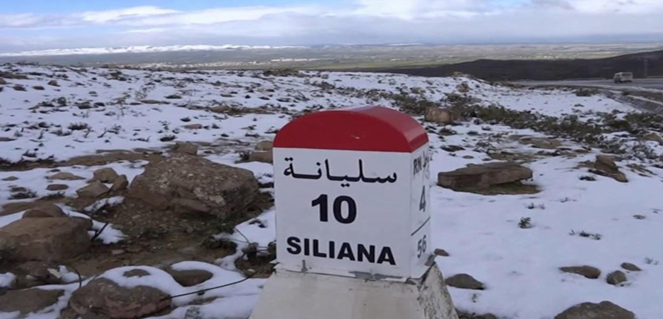 Don de sel au gouvernorat de siliana